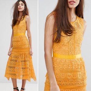 True Decadence Yellow Lace Ruffle Midi Dress 10